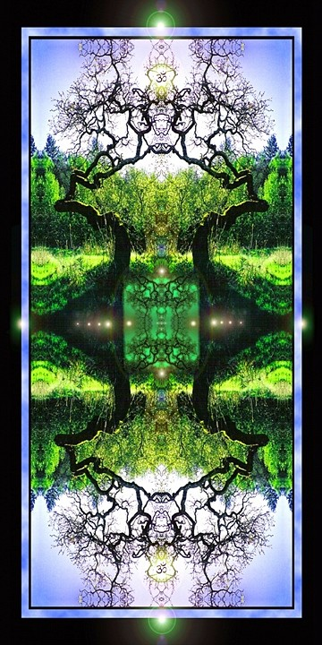 Nansee Greenwitch Green Radiance of Trees